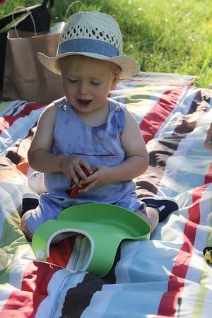 picnic at Biltmore