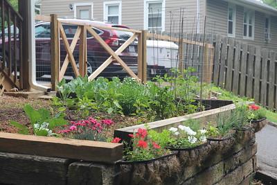 backyard garden in Asheville