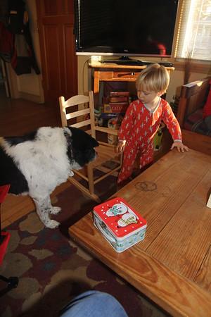Bessie checks out the new rocker