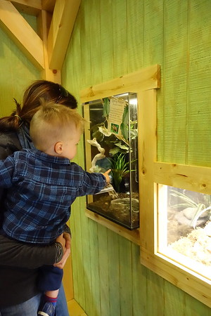 Visiting the Nature Center