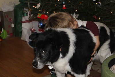 a boy and his dog....