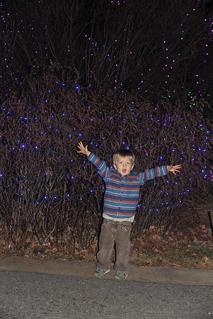 Entry to the NC Arboretum (mostly) Outdoor Light Display