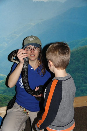 "being ""brave"" and touching the rat snake at the Nature Center"