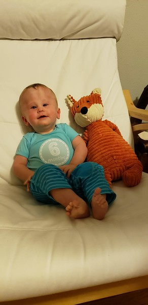 Arlo's 6 month pix with Red Fox