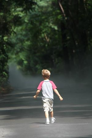 "heading ""into the mist"""