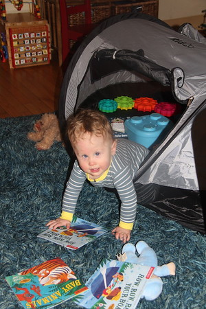 so many books to read - and a baby for Arlo!