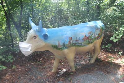 Durham Bull wears a mask