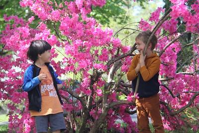Miles and Elliot in the azalea