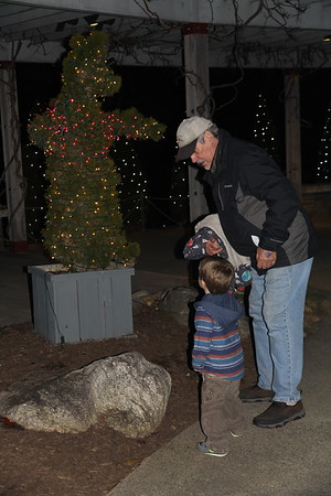 looking at a bear with Granddad