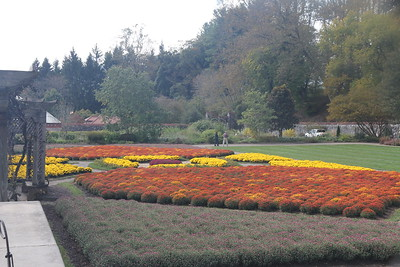 fall gardens at Biltmore