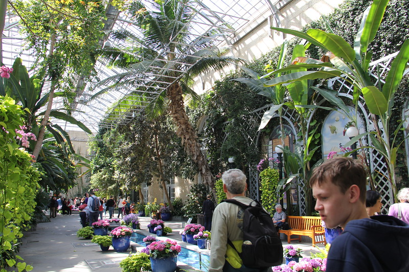 United States Botanical Gardens in Washington, DC - the main atrium