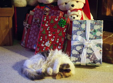 Guarding the presents