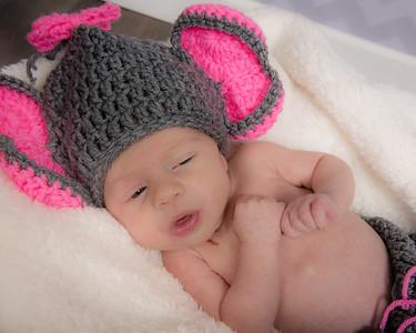 Warner- newborn