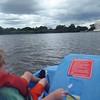 Paddelboats at the tidal basin