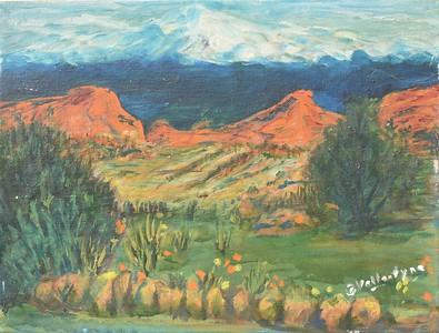 11 Garden of Gods - Colorado  12 X 16