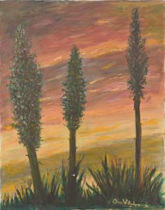 Century Plants  - 22 X 28