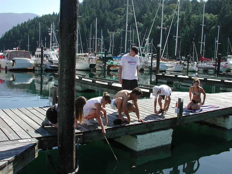 Martha, Eileen and Ian show their kids how to Shiner Fish off the Government Dock in Snug Cove.<br /> Laura, Nicole, Warren, Ian, Mark, Kristen
