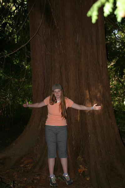 Laura Gillier and a young Douglas Fir tree in Crippen Park.
