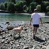 Ian and his dog Keisha walk the beach at high low tide.