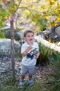 Webster Family Photos-115