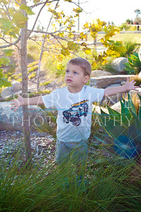 Webster Family Photos-120