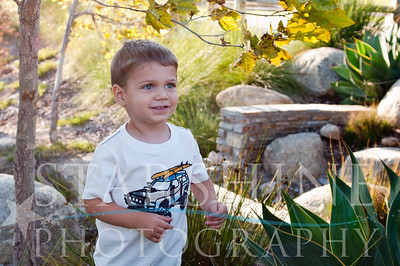 Webster Family Photos-119