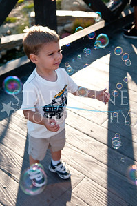 Webster Family Photos-132