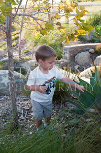 Webster Family Photos-116