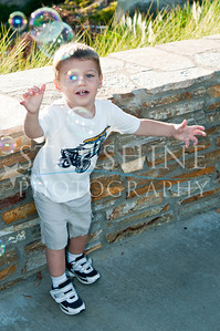 Webster Family Photos-135