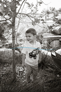 Webster Family Photos-118