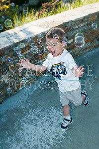 Webster Family Photos-136