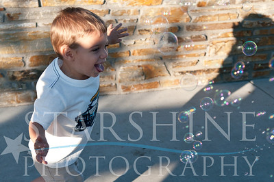 Webster Family Photos-129
