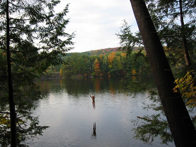The best rope swing in the world on the Connecticut River.