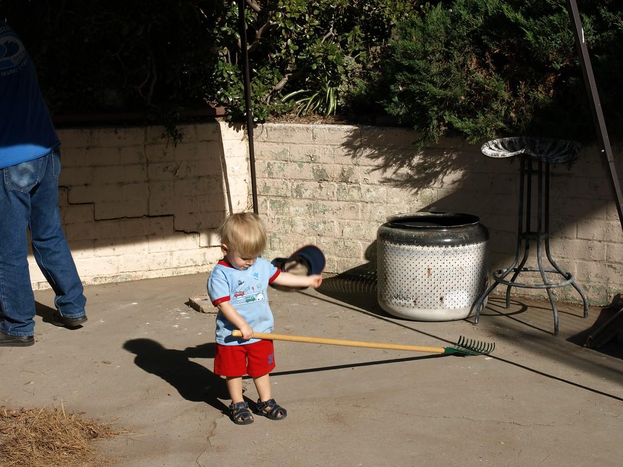 Raking the backyard.