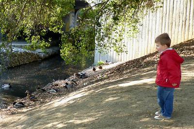 Joey feeding ducks at the arboretum