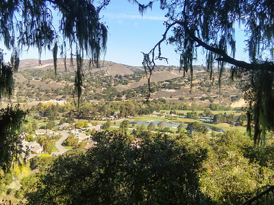 Carmel Valley Birthdays 2014