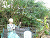 """...a robin sings its song"" (from the final chorus of my song Miss You) - this robin (on branch above her hand) sang to Wendy in Jenny and Paul's garden on Sunday 9 September.  We'd been to Fosse Park earlier to buy clothes and Wendy wrote ""is it sensible to pay £35 for a cardigan at this stage?"""