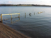 The fence that runs into the lake, just by Wendy's bench
