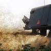 wheat-harvest-8