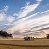 wheat-harvest-10