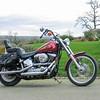 Harley Softail, 2005