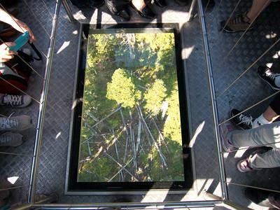 Glass bottom on Peak 2 Peak Gondola