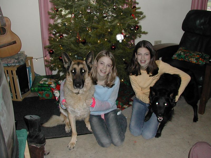 All four of my girls christmas '04