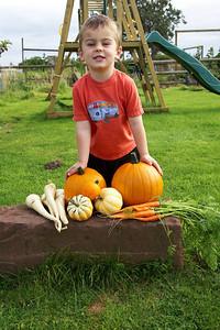 William Autumn Harvest_03