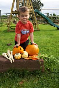 William Autumn Harvest_01