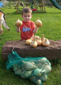 William Autumn Harvest_22