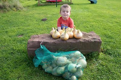 William Autumn Harvest_21