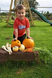 William Autumn Harvest_02