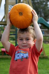 William Autumn Harvest_07