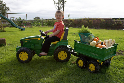 William Autumn Harvest_24